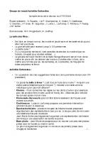 Compte-rendu GT Activités Culturelles n°2